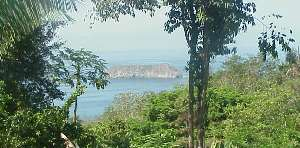 Our ocean and jungle view